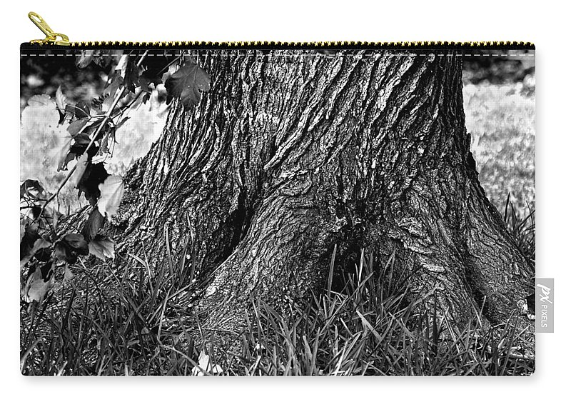 B&w Carry-all Pouch featuring the photograph Maple by Dan Wells