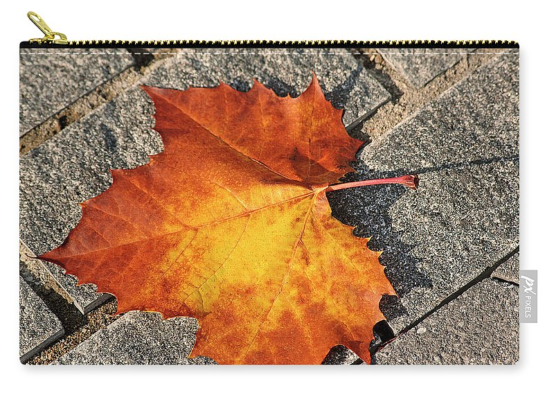Maple Carry-all Pouch featuring the photograph Maple Leaf In Fall by Carolyn Marshall