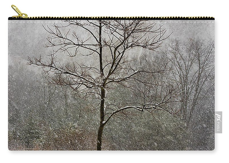 Winter Carry-all Pouch featuring the photograph March Tree by Ron Jones
