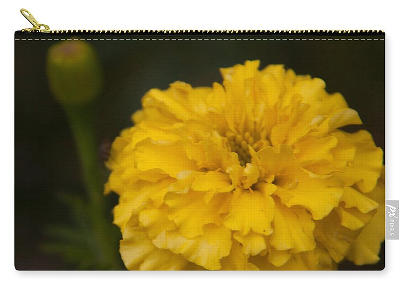 Flower Carry-all Pouch featuring the photograph Marigold by Rebecca Akporiaye