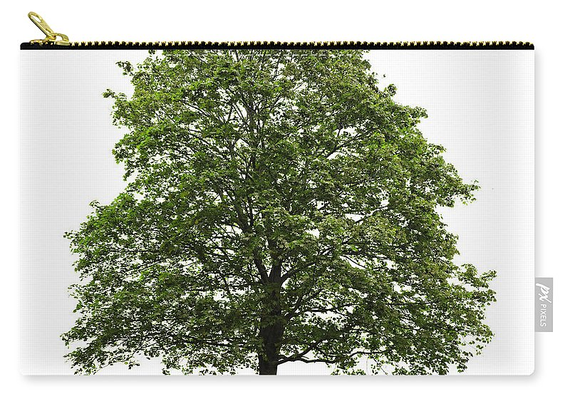 Tree Carry-all Pouch featuring the photograph Mature Maple Tree by Elena Elisseeva