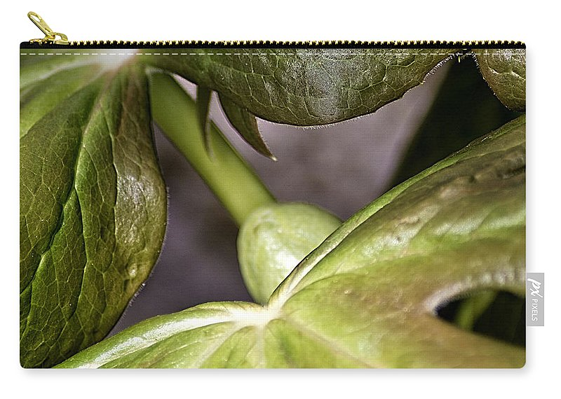 Usa Carry-all Pouch featuring the photograph May Apple by LeeAnn McLaneGoetz McLaneGoetzStudioLLCcom
