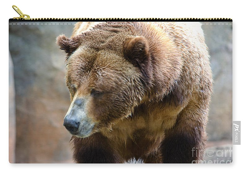Grizzly Carry-all Pouch featuring the photograph Meandering Along by Scott Hervieux