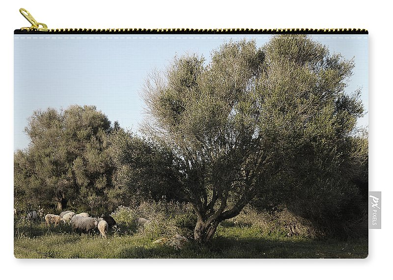 Nobody Carry-all Pouch featuring the photograph Mediterranean Wood Wiew by Pedro Cardona Llambias