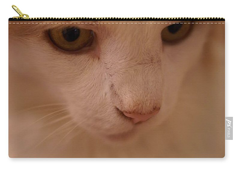 Sam Carry-all Pouch featuring the photograph Meow by Heidi Poulin