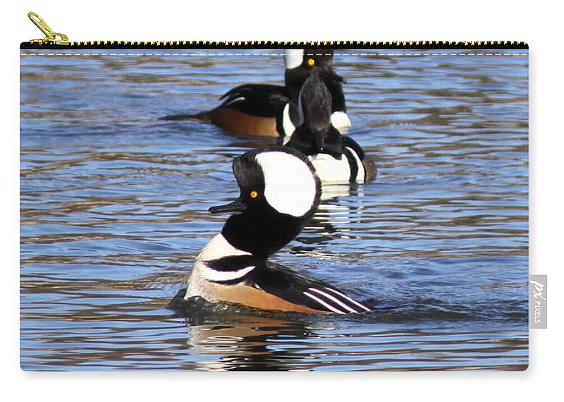 Hooded Merganser Carry-all Pouch featuring the photograph Mergansers All In A Row by Travis Truelove