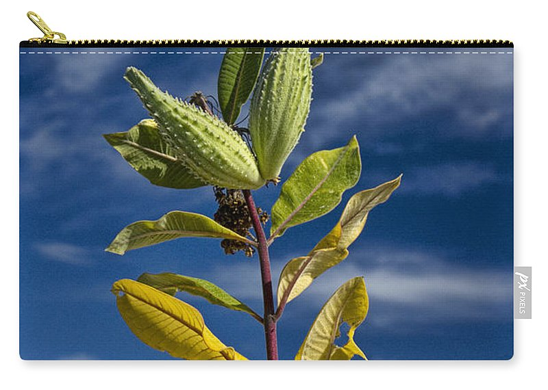 Art Carry-all Pouch featuring the photograph Milkweed Pods Against A Blue Sky Background by Randall Nyhof