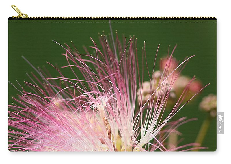Carry-all Pouch featuring the photograph Mimosa And Worm by Travis Truelove