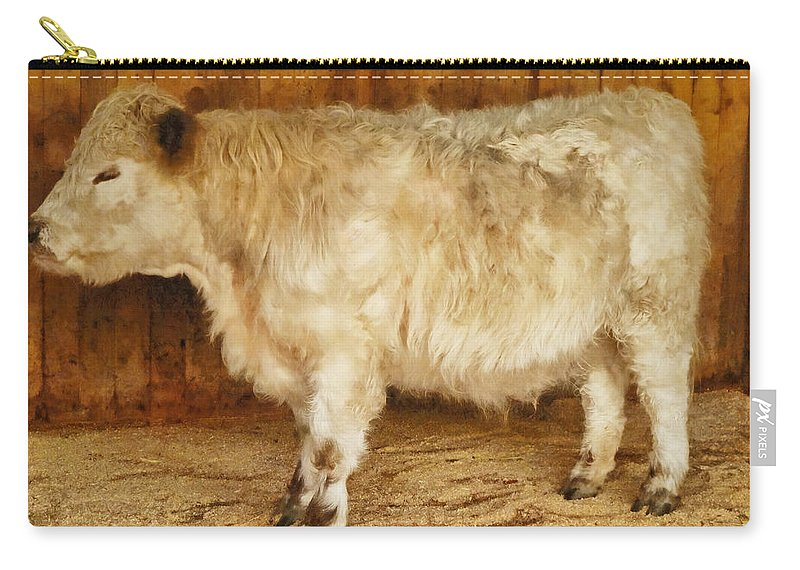 Small Carry-all Pouch featuring the photograph Mini Moo by Steve Taylor