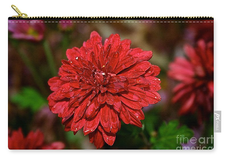 Flower Carry-all Pouch featuring the photograph Minnruby by Susan Herber