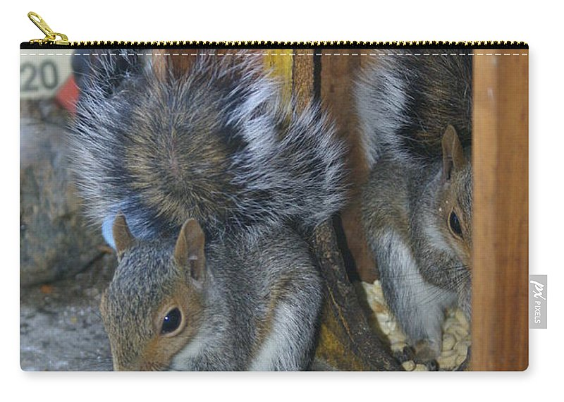 Squirrels Carry-all Pouch featuring the photograph Mirror Image by Ben Upham III