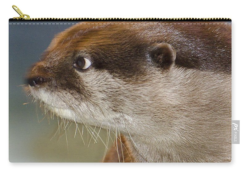Sea Otter Carry-all Pouch featuring the photograph Mischief by Jim And Emily Bush