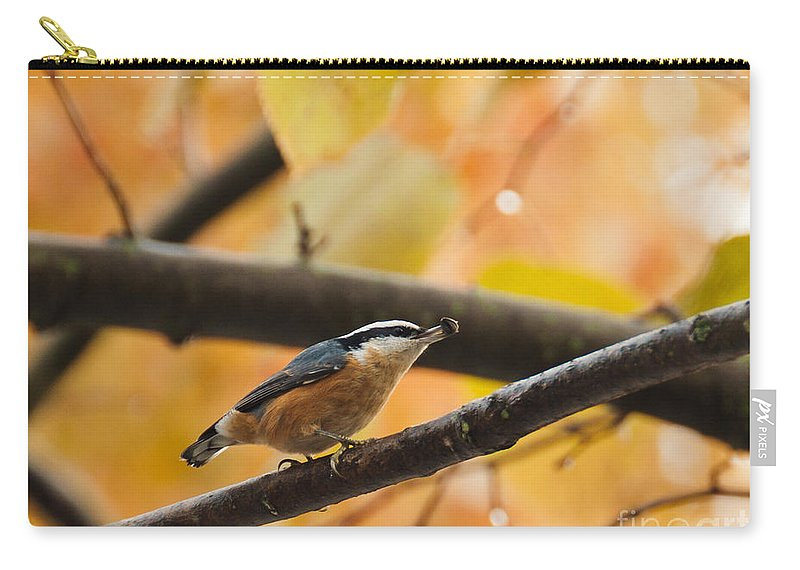 Nuthatch Carry-all Pouch featuring the photograph Mission Possible by Cheryl Baxter