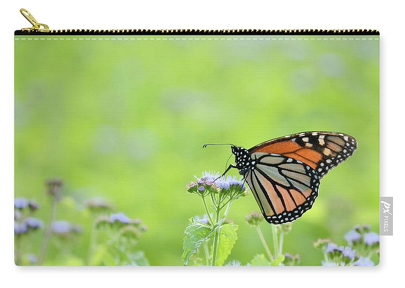 Orange Carry-all Pouch featuring the photograph Monarch And Mist by JD Grimes