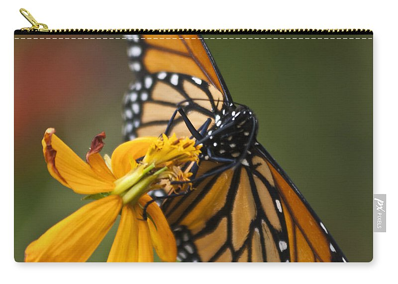 Nature Carry-all Pouch featuring the photograph Monarch Butterfly  by Heiko Koehrer-Wagner
