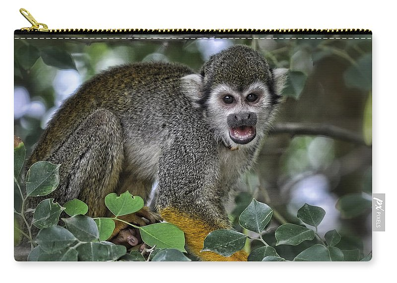 Squirrel Monkey Carry-all Pouch featuring the photograph Monkeying Around by Saija Lehtonen