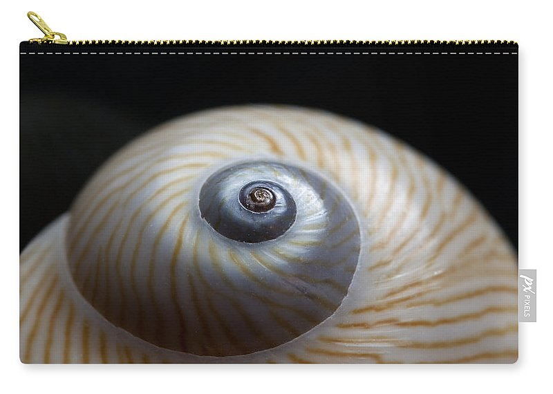Moon Carry-all Pouch featuring the photograph Moon Shell by Carol Leigh