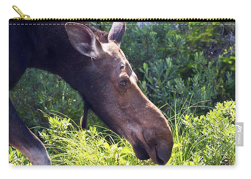 Moose Carry-all Pouch featuring the photograph Moose Profile by Glenn Gordon