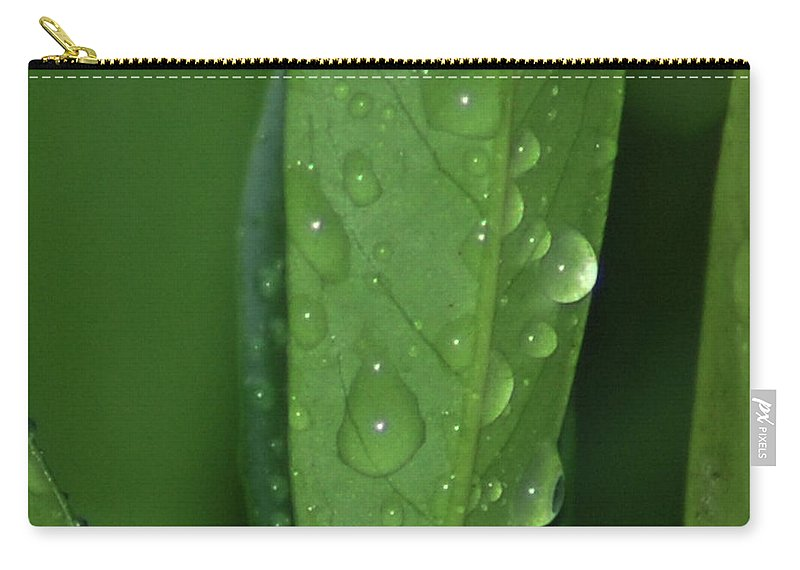 Dew Carry-all Pouch featuring the photograph Morning Dew by Michael Merry