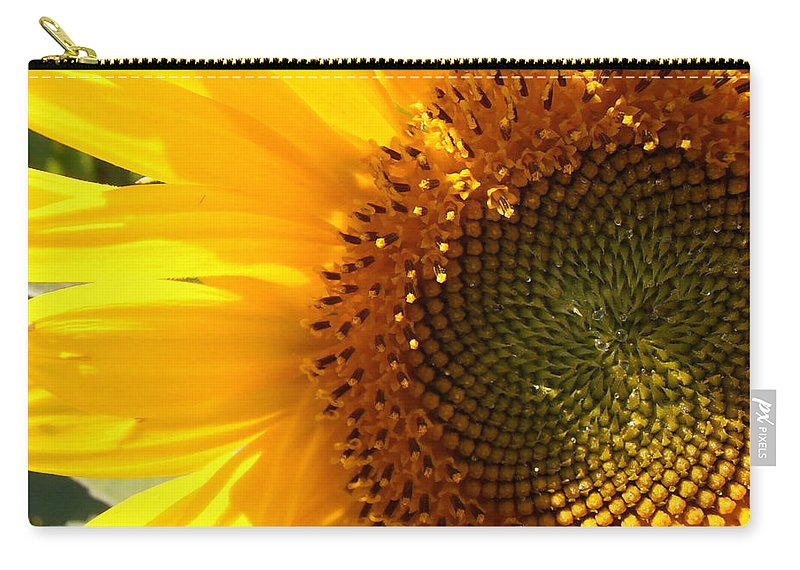 Sunflower Carry-all Pouch featuring the photograph Morning Dew On Sunflower by Kimberly Perry