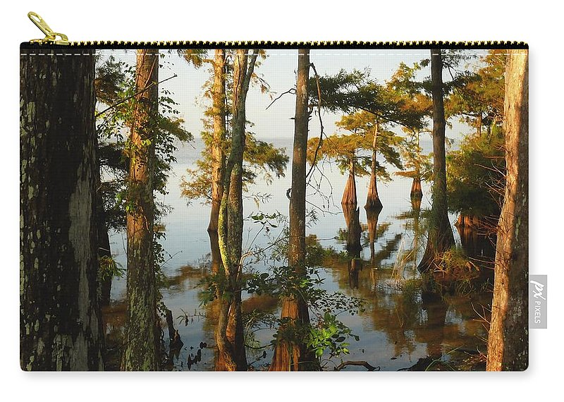 Swamps Carry-all Pouch featuring the photograph Morning In The Swamps by Robert Brown