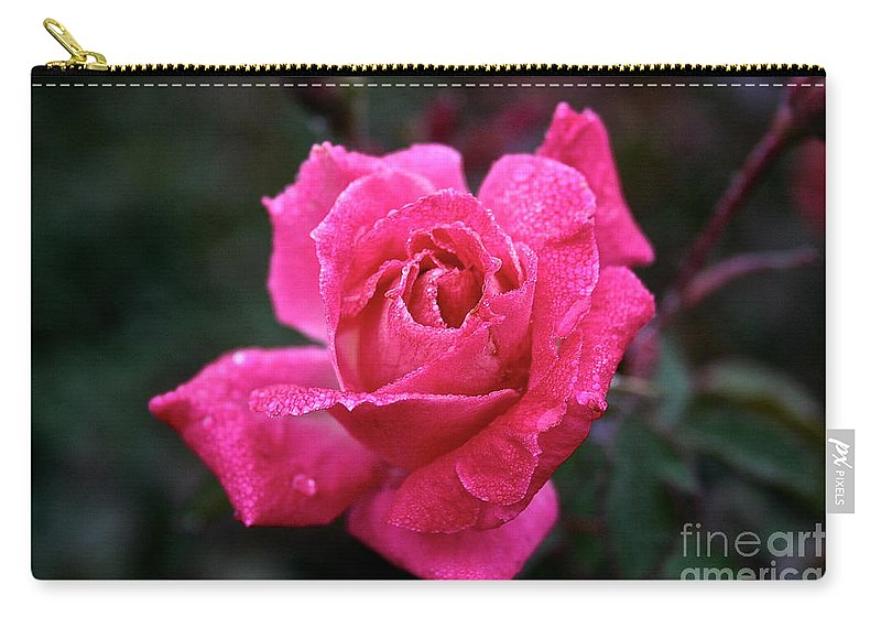 Flower Carry-all Pouch featuring the photograph Morning Moisture by Susan Herber