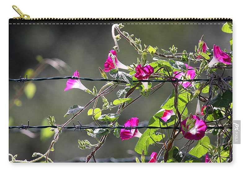 Morning Glory Carry-all Pouch featuring the photograph Morning Pink by Travis Truelove