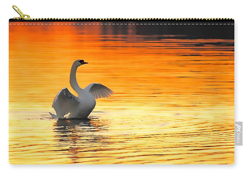 Swans At Dawn Carry-all Pouch featuring the photograph Morning Stretch by Randall Branham