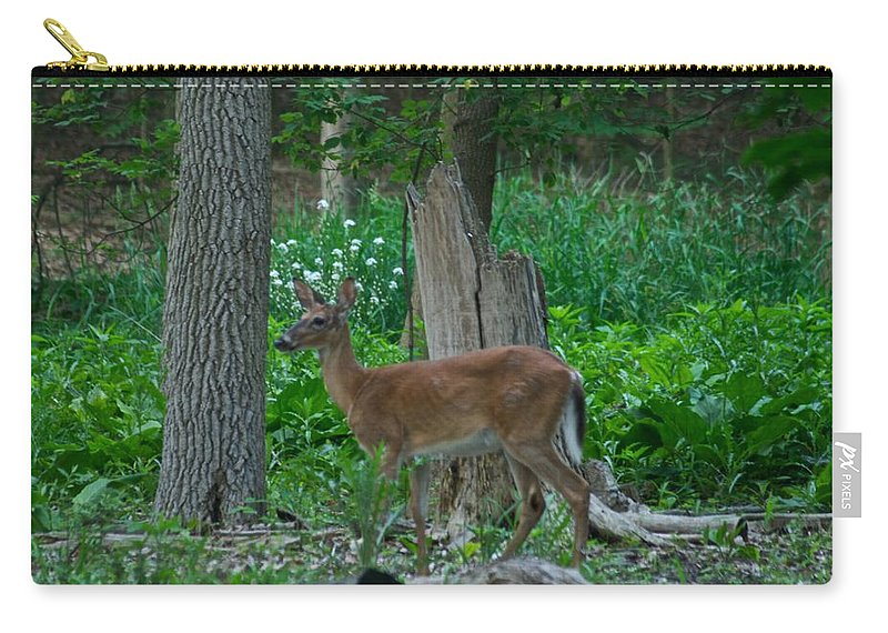 Animal Carry-all Pouch featuring the photograph Morning Stroll 7353 1743 by Michael Peychich