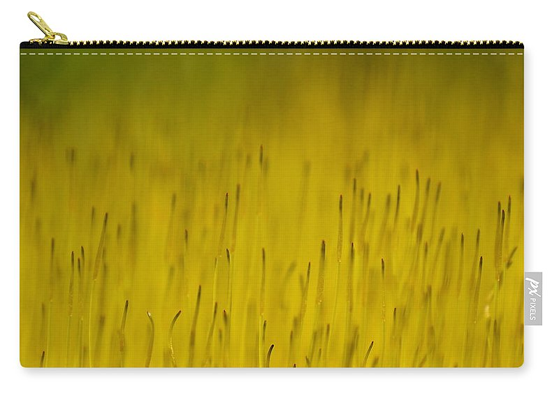 J.d. Grimes Carry-all Pouch featuring the photograph Moss In Yellow by JD Grimes