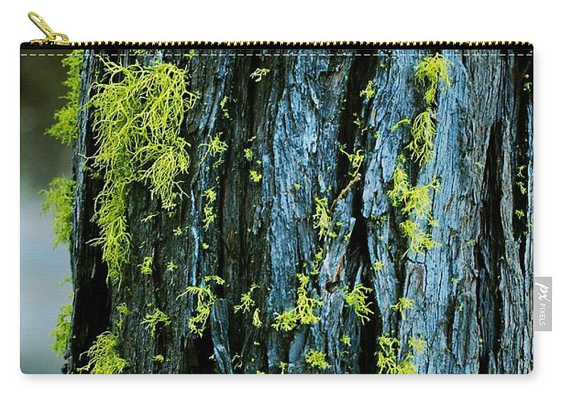 Moss Carry-all Pouch featuring the photograph Mossy Compass by Eric Tressler