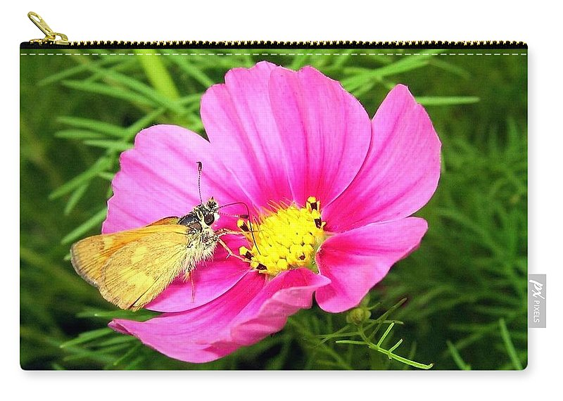 Moth Carry-all Pouch featuring the photograph Moth On A Cosmos by Will Borden