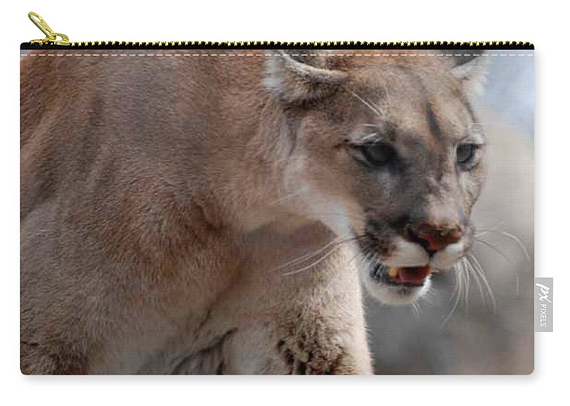 Mountain Carry-all Pouch featuring the photograph Mountain Lion by Paul Ward