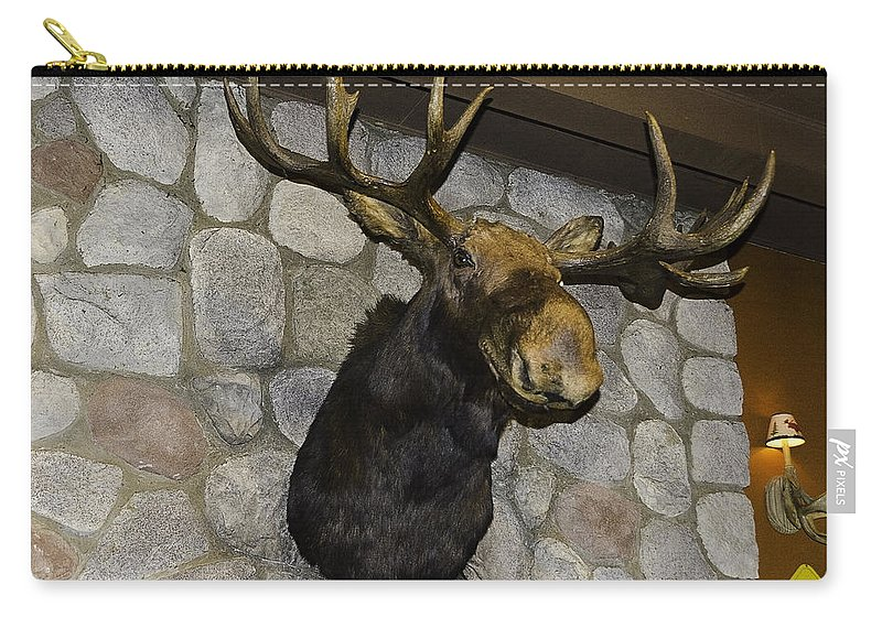 Usa Carry-all Pouch featuring the photograph Mounted Moose by LeeAnn McLaneGoetz McLaneGoetzStudioLLCcom