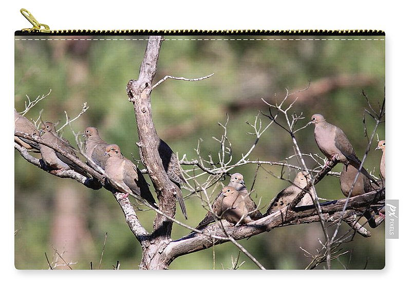 Nature Carry-all Pouch featuring the photograph Mourning Dove - Board Of Directors by Travis Truelove