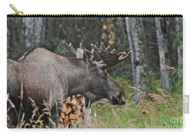 Moose Carry-all Pouch featuring the photograph Moving On by Rick Monyahan