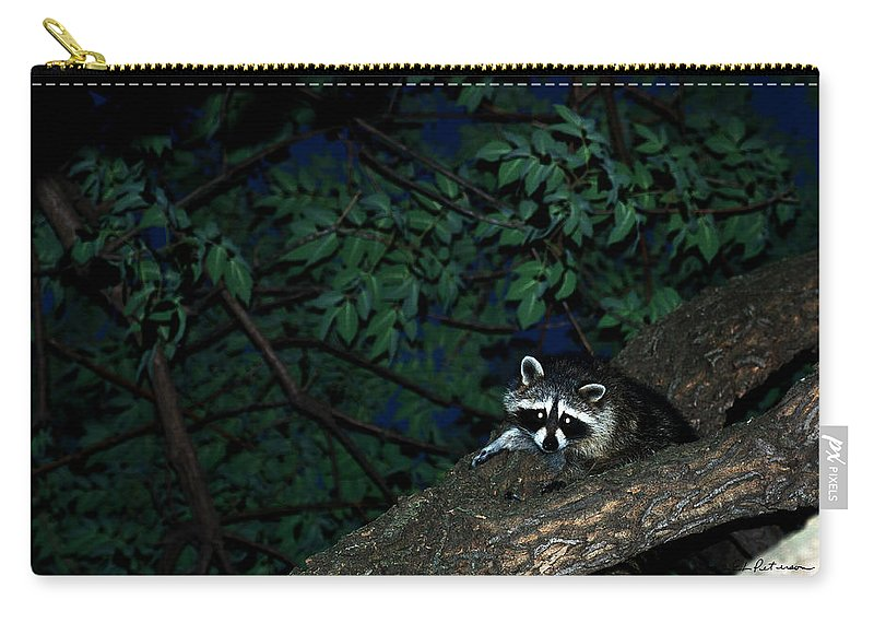 Raccoon Carry-all Pouch featuring the photograph Mr. Raccon by Edward Peterson