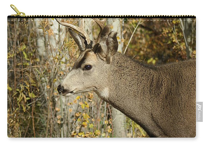 Deer Carry-all Pouch featuring the photograph Mulie Buck 3 by Ernie Echols