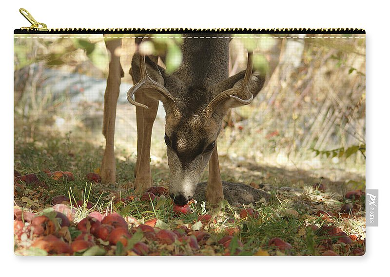 Deer Carry-all Pouch featuring the photograph Mulie Buck 4 by Ernie Echols