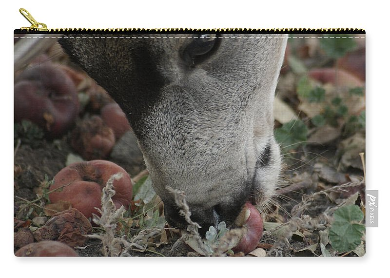 Deer Carry-all Pouch featuring the photograph Mulie Buck 5 by Ernie Echols
