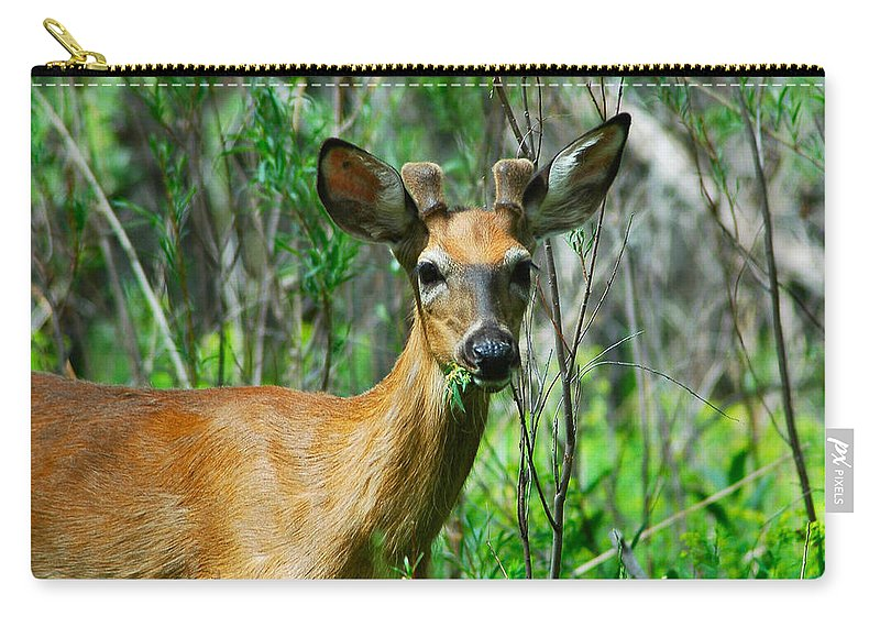 Deer Carry-all Pouch featuring the photograph Munch Time by Lynn Bauer
