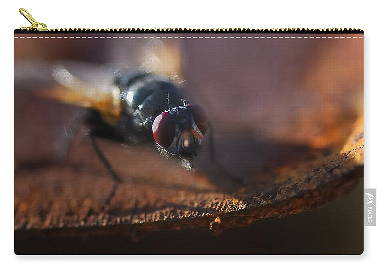 Nature Carry-all Pouch featuring the photograph My My My Little Fly by Susan Capuano
