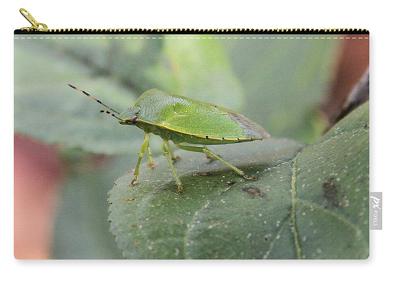 Green Stink Bug Carry-all Pouch featuring the photograph My Pretty Green Stink Bug by Doris Potter