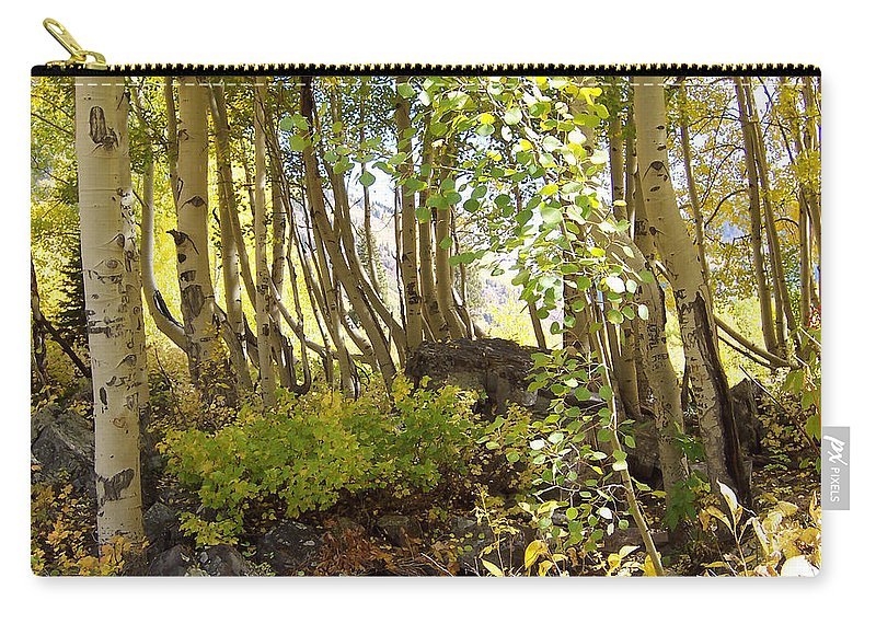 Aspen Carry-all Pouch featuring the photograph My Secret Place by Dee Fabian