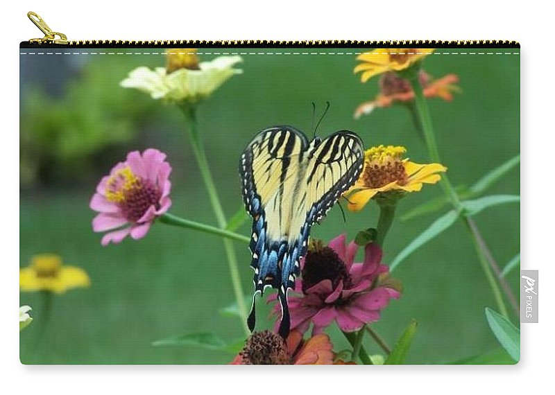 Blue Butterfly Carry-all Pouch featuring the photograph Nature by Cynthia Amaral