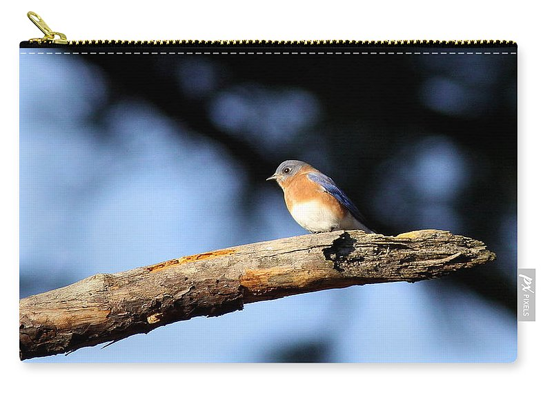Nature Carry-all Pouch featuring the photograph Near The End by Travis Truelove