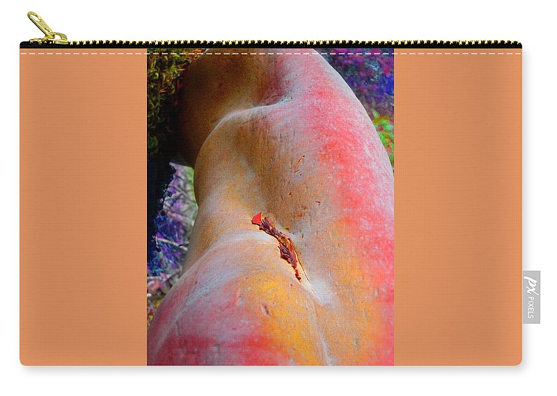 Nature Carry-all Pouch featuring the digital art Nectar by Richard Laeton