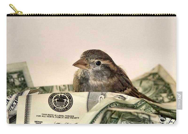 Nest Carry-all Pouch featuring the photograph Nest Egg by Art Dingo