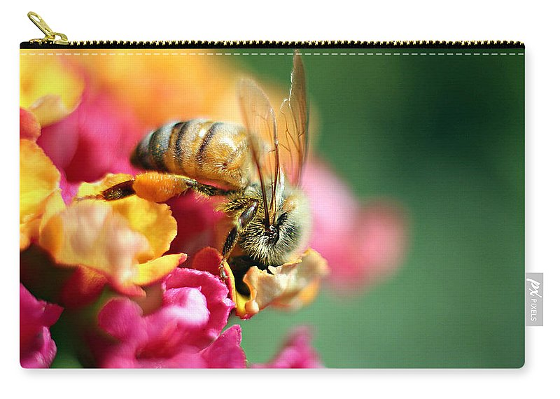 Bee Carry-all Pouch featuring the photograph Nestled In by Heidi Smith