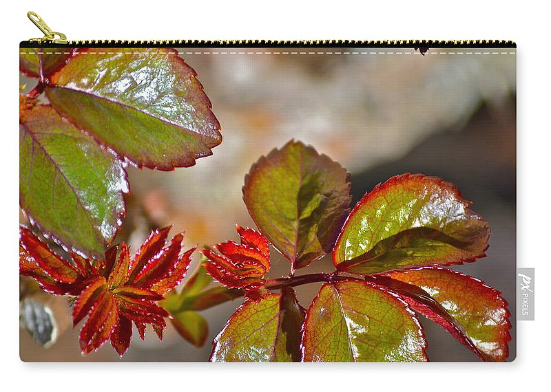 Roses Carry-all Pouch featuring the photograph New Leaves by Bill Owen
